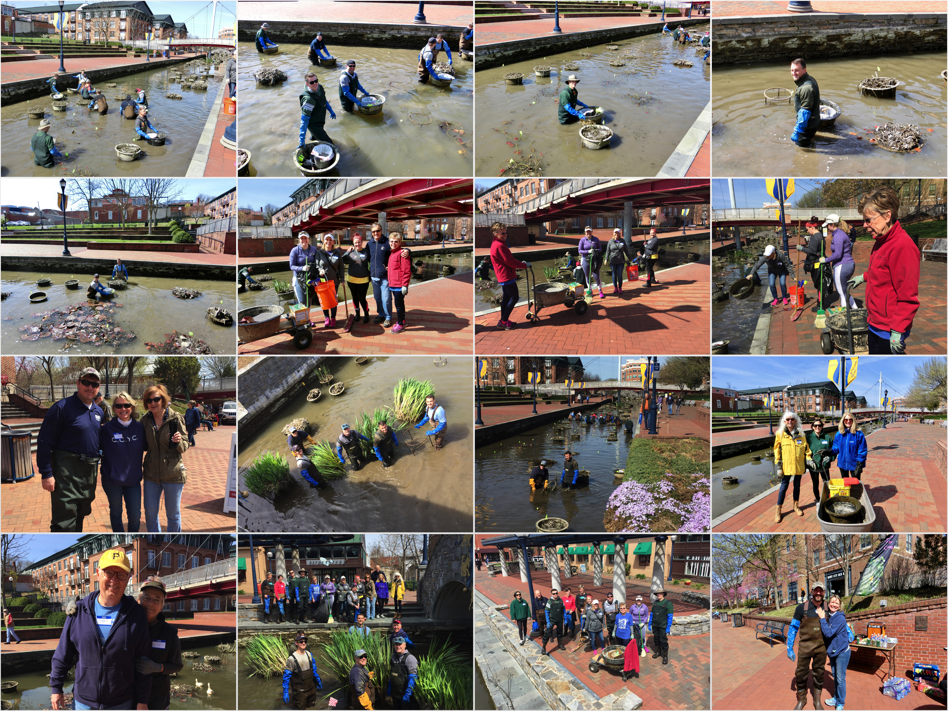 Rotary-Carroll on the Creek 2018.04.21 2.jpg